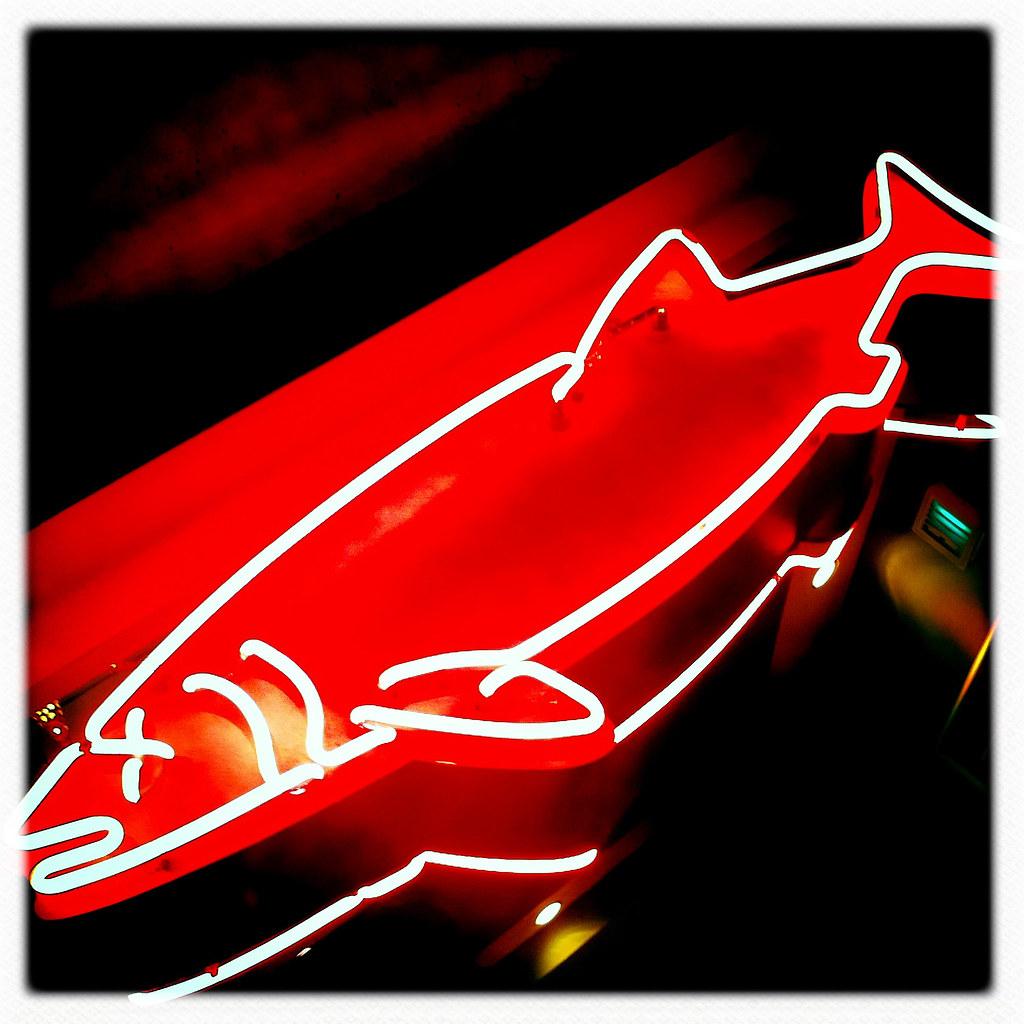 Dead Neon Fish