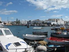 2011-01-tunesie-274-bizerte