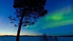 The Aurora on Vimeo by Terje Sorgjerd (r0ma4) Tags: nature norway canon landscape timelapse vimeo time astro aurora hd dolly visual lapse northernlights dreamscape borealis reel kirkenes nordlys northernlight vimeo:id=21294655