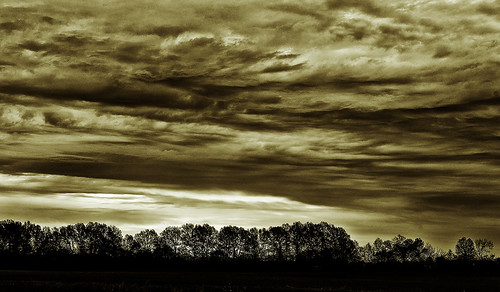 Sepia sunrise