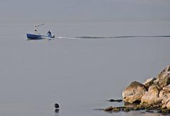 Retour de pche (Diegojack) Tags: eau lac bateaux navigation