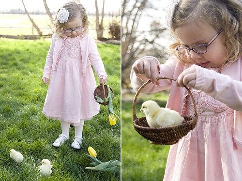 easter_chick_3