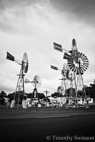 Windmills B&W