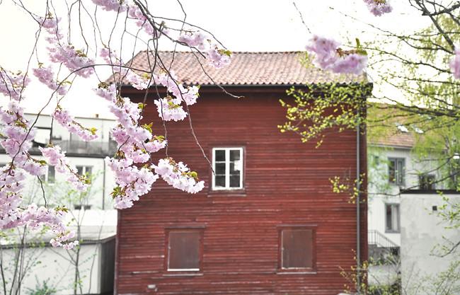 röda huset