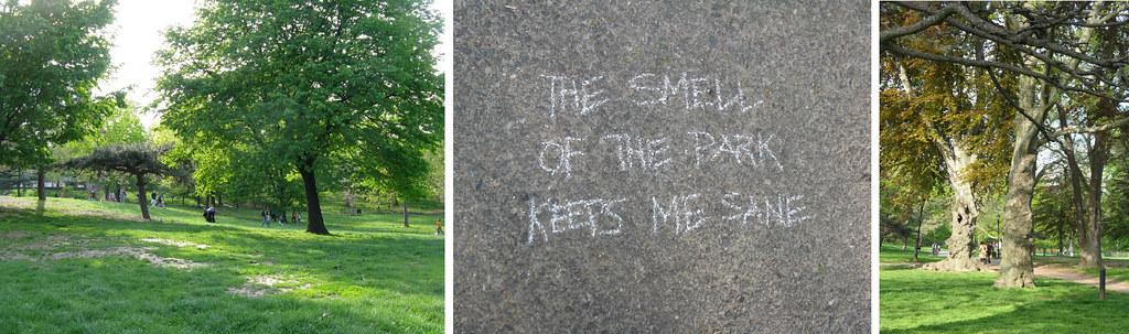 park smell