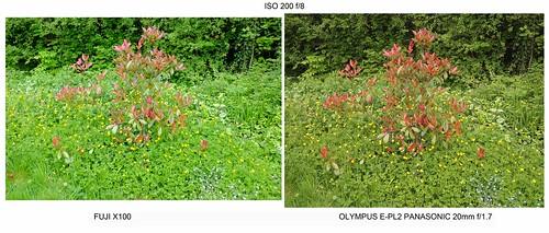 Fuji X100 compared to Olympus E-PL2 plus Panasonic 20mm f