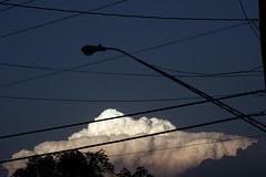 (Ashley Wallingford) Tags: treetops cloudporn powerlineporn threeofmyfavoritethings