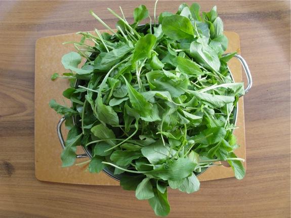 arugula smashed potato salad herbs 002