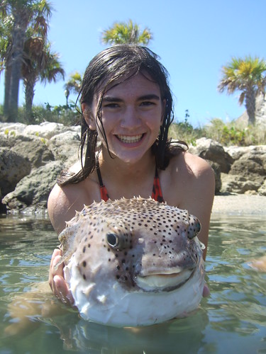 Ryenne with burrfish