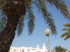 EMOTIONs ! !     (Poem&Photo)   Tunisian Republic   ( TheFourSeasonsPhotography&more.) Tags: trees green love beautiful leaves moving words amazing remember peace view tunisia country bluesky explore palmtrees dreamcometrue striking discovery belong tranquil tunisiajune2011 underneather