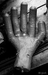 La sberla (giuvine eroA) Tags: blackandwhite bw torino hands hand arte performance mani bn workshop mano lupin laboratori youssouf lpin pinocchi piazzalevaldofusi direfarebaciare nikond300 marionettagigante museoregionalediscienzenaturali performingnow studentperformingfestival cortiledellafarmacia lpingiuvineeroa lethlpinballplayer 131415maggio2011 azzizeigantsdusud justforjoyeuropeanassociation puzzett