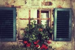 Ventana (Thelma Gatuzzo) Tags: italy texture window ventana finestra janela toscana tatot mygearandme thelmagatuzzo blinkagain bestofblinkwinners