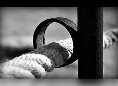 La Soga (The rope) (Vilchez57) Tags: foto fotografa fotgrafo soga cuerda hierro aro desenfoque selectivo blanconegro bn vilchez57