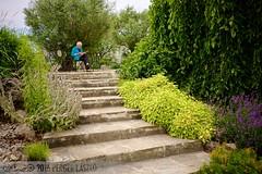 PLW_5564 (Laszlo Perger) Tags: wien vienna österreich austria blumengarten hirschstetten flowergarden