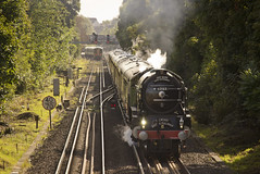 A1 no.60163 'Tornado' (alts1985) Tags: a1 no60163 tornado main line steam train frenches road redhill belmond surrey hills pullman 300916