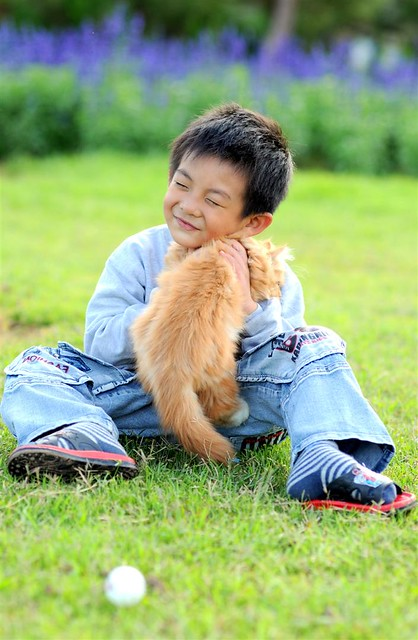 Mèo & chú bé
