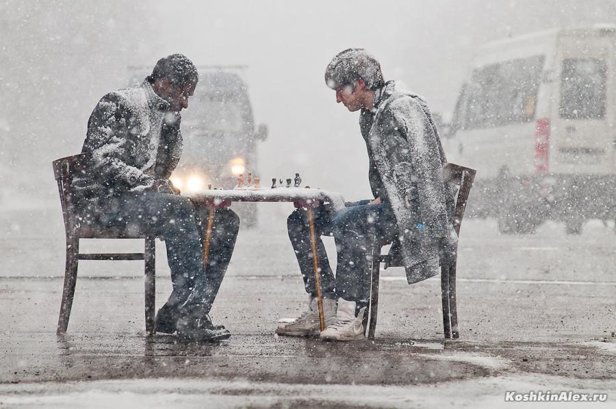 Шахматы под снегом 2580 (цвет)
