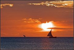 Dreams of Zanzibar, Part II (Joost N.) Tags: africa travel light sunset orange sun holiday water tanzania boat zonsondergang nikon african going down sail afrika zanzibar nikkor joost unguja d700 notten