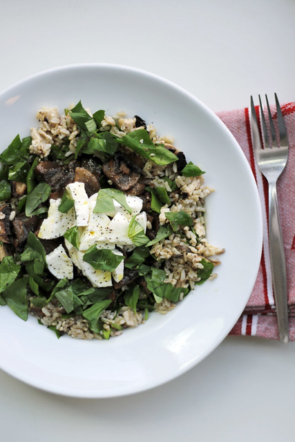 Mozzarella, Mushrooms and Brown Rice