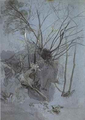 tree study by john ruskin 1845