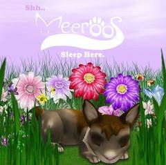 Meeroos1