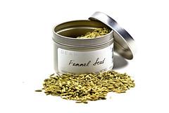103/365 (jparkerimages) Tags: food spice tasty seeds fennel meatballs apicaday 3652011