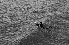 (Tachameladoble (instagram.com/juanignaciovidela)) Tags: california bw byn blancoynegro la losangeles agua nikon surf surfer board playa bn surfboard ola wetsuits tabla quiksilver sealbeach eeuu surfista tachameladoble