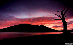 Skiddaw On Fire (.Brian Kerr Photography.) Tags: sky mountains tree clouds sunrise canon landscape colours lakedistrict cumbria stunning onfire skiddaw bassenthwaite eos5dmkii briankerrphotography