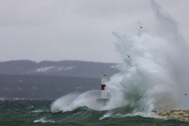 spring surf 06