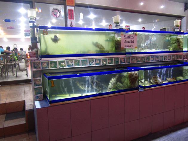 Kuang Sea Foods, Bangkok, Thailand