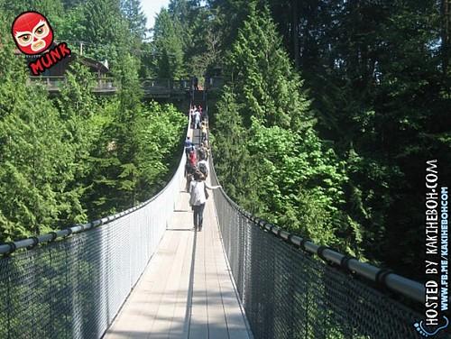 capilano_suspension_bridge (4)