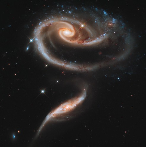"NASA's Hubble Celebrates 21st Anniversary with ""Rose"" of Galaxies"