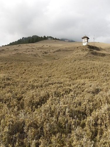 A lonely chorten