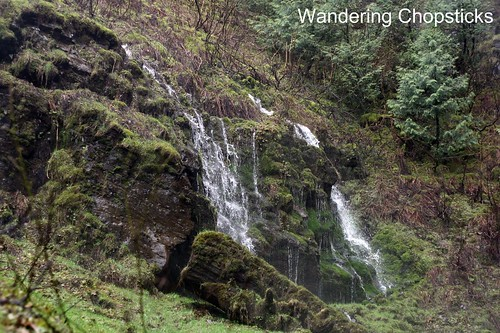 8 Latourell Falls (Winter) - Columbia River Gorge - Oregon 11