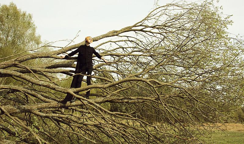 Välte ett träd