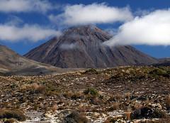 Nový Zéland: Maorské tance ve vulkanickém parku Tongariro