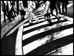 Rotating Shinjuku - iPhonography Experiment - (Takahiro Yamamoto (2nd account)) Tags: street camera people blackandwhite monochrome mobile tokyo shinjuku crossing pedestrian line walker zebra   iphonography iphoneography
