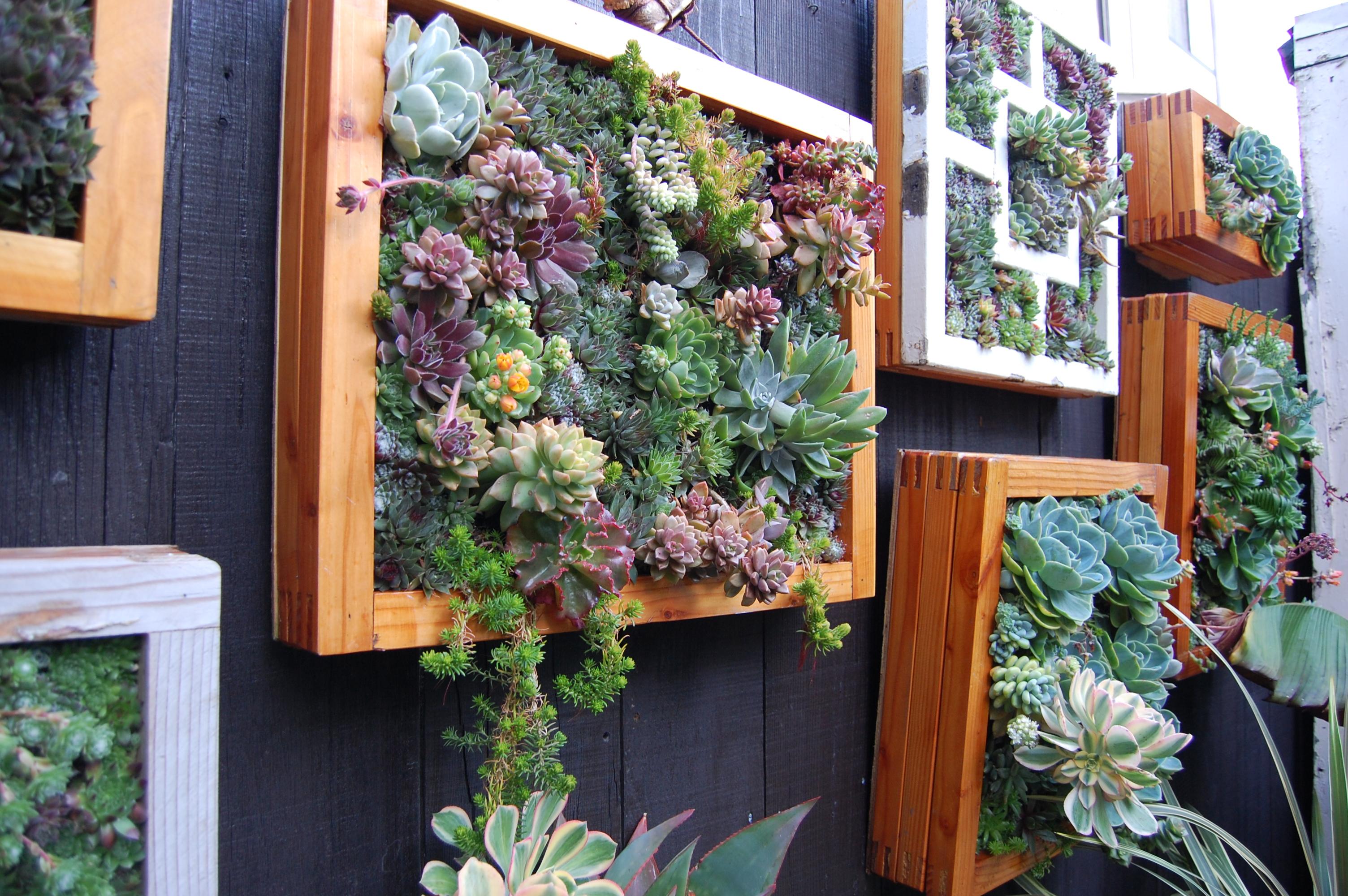 Живые цветы на стену фото 4