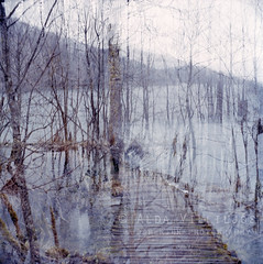 Portrait of Croatia (ljosberinn) Tags: film nature landscape doubleexposure lakes creative dream croatia memory plitvice