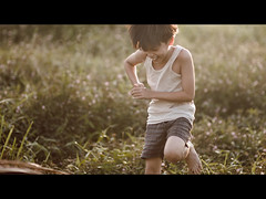 """THE NIPAH KINGS"" - Scene 04 (zero239) Tags: life morning friends playing boys kids frames julian nikon warm dof bokeh outdoor f14 85mm racing harmony flare laughter letterbox sequence cinematic 169 storyboard teasing winning shortfilm nipah lalang wideopen storyboarding afd primelens bokehlicious d300s julianoh 1malaysia nipahleaves"