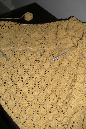 Swallowtail Shawl in Progress