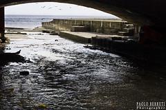 0479 Il mare quando ha sete (Misterpabe) Tags: mare ponte uccelli riflessi pioggia noli
