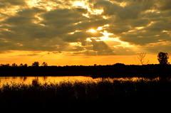 """"""" Sunset Golden glow  Gildehauservenn """" (Kalbonsai) Tags: golden couds clouds wolken gildehauservenn waterscape suntrails outdoorphotography heideveld nikon d5100 1685mm sunset"""