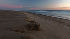 The Great Beach (mastodont) Tags: sunset june beach pacific ocean pointreyesnationalseashore marincounty california