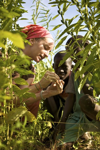 Caitrin Martin's volunteer work in Senegal served as the inspiration for the Peace Corps 50th Anniversary print. Photo courtesy of the Peace Corps.