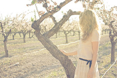 Almond (Alexandra Pena) Tags: flowers light sunset sun flores primavera luz sol girl field hair atardecer spring chica almond dresses blonde rubia campo pelo cabello almendro almendra softtones vestidos castalla canon450d tonossuaves alexandrapena