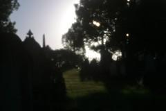 Toowong Cemetery (Natashatashtash) Tags: cemetery lensbaby brisbane pinhole toowong brisbanemeetup toowongcemetery lensbabycomposer pinholeoptic lensbabypinhole