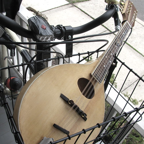 Mandolin in a Basket