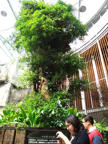 2011台北花博-未來館-生命樹.jpg