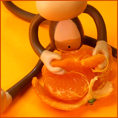 Orange Slice (Rigib) Tags: orange caf canon square toy monkey kaffee slice mandarin macaco 60mm abe peel caff ono affe kva    mapa f180  lens00025 bobbyjack img4530  kawy  365toyproject   ourdailychallenge